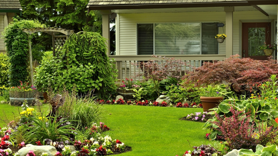 Lawn Treatment Is Important for Keeping Pests Away