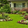 lawn treatment is important for keeping pests away - Lawn Treatment